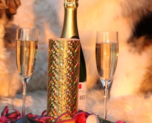 Canva – Dogs Celebrating New Year (2)